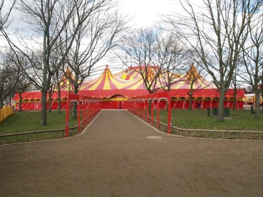 www arena cirkus